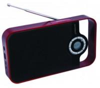Radio Portátil RPDS250RD